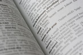 Daily Prompt: Dictionary, Shmictionary