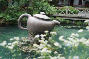 I'm Bringing Home Authentic Emperor's Dragon Well Green Tea