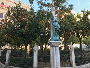 Can You Eat the Sidewalk Oranges Growing in Valencia?