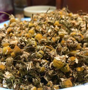 Chamomile Tea Can Help Calm Your Anxiety