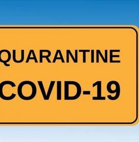 Three Month Update From Quarantine