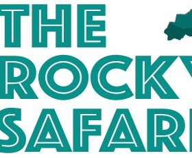 The Rocky Safari: New Look